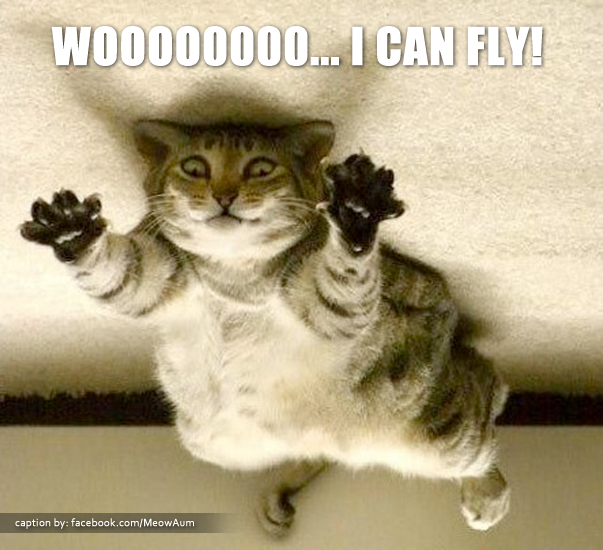 Supercat - I Can Fly!