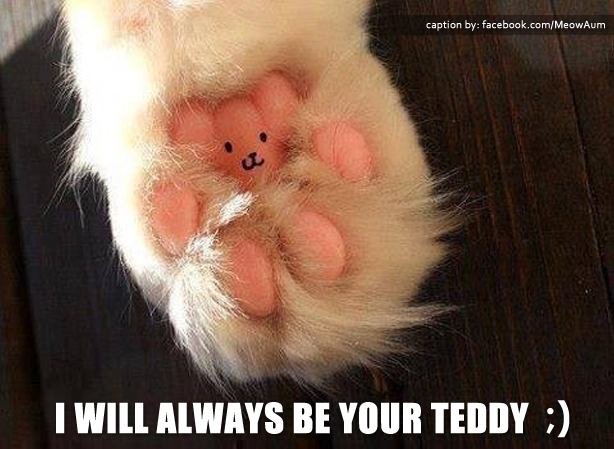 I Will Always Be Your Teddy ;)
