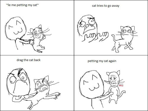 #CatMemes - Petting Cat