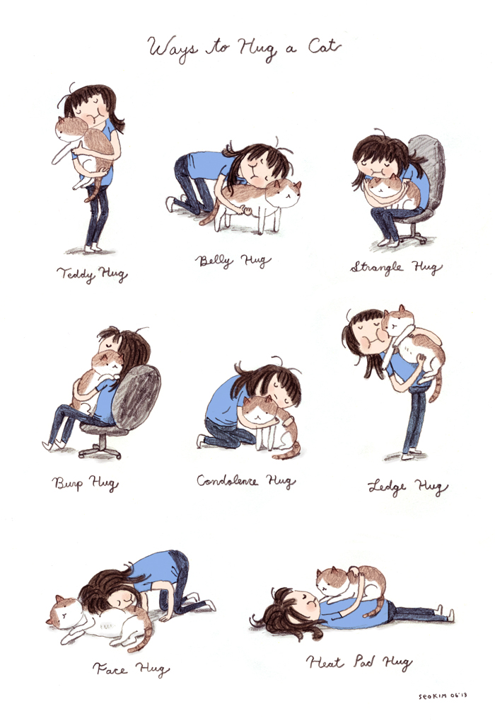 Ways To Hug A Cat