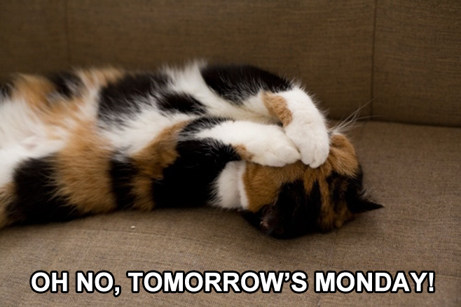 Oh no, tomorrow's Monday!