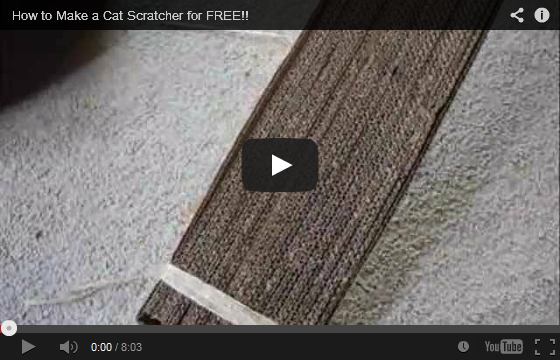 #DIY - How to Make a Cat Scratcher for FREE