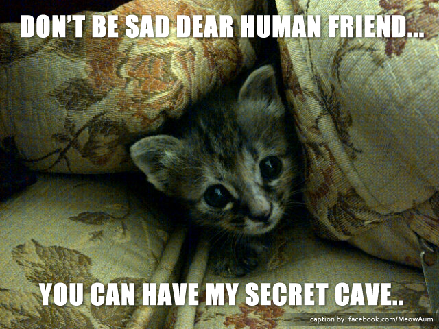 Don't be Sad Dear Human Friend... You Can Have My Secret Cave..