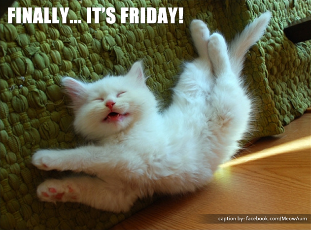 Finally... It's Friday!