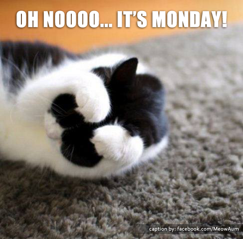Oh Noooo... It's Monday!