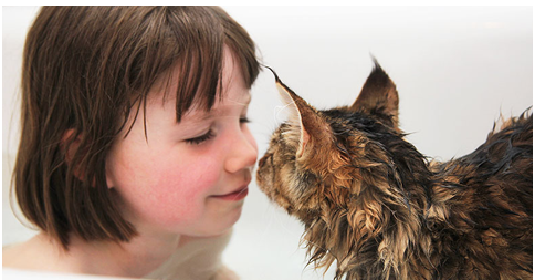 Heartwarming Friendship between 5-year Old Girl with Autism and Her Therapy Cat