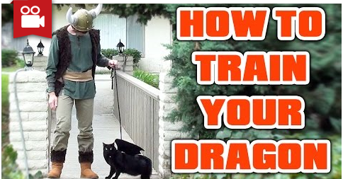 "How to Train Your ""Dragon"""